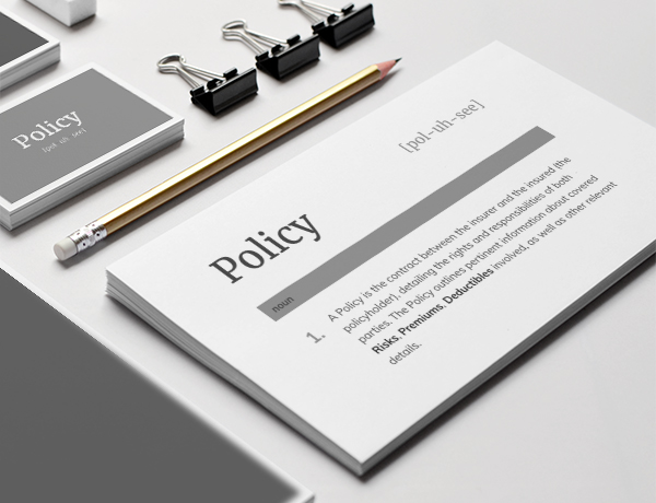 <p>What is a Policy?</p>