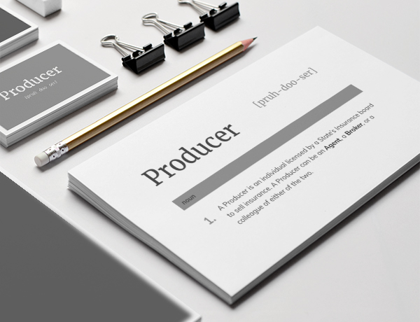 <p>What is a Producer?</p>