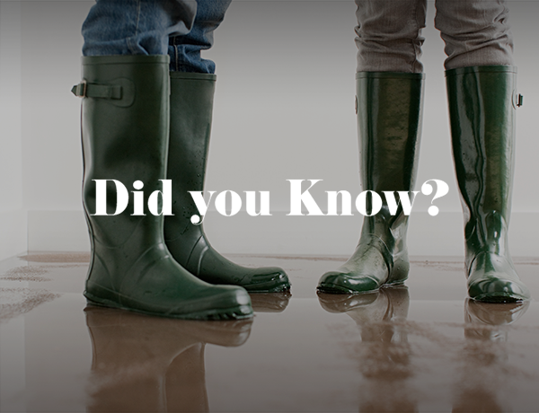 Did You Know This Fact About Flood Damage?