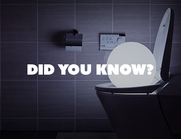 Did You Know This Fact About Flushing the Toilet?